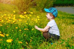 Portrait of a happy little boy in the park Royalty Free Stock Images