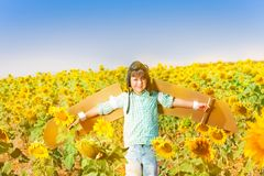 Happy little boy playing pilot in sunflower field Royalty Free Stock Photo