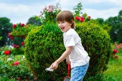 Portrait of happy little boy stock images