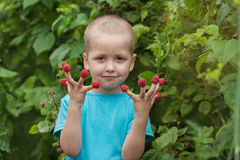 Portrait happy little child with raspberry outdoors Royalty Free Stock Photos