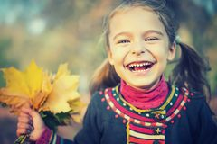 Happy little girl with autumn leaves Royalty Free Stock Photo