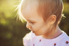 Portrait of a  little girl in the field stock image