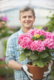 Portrait of happy man holding flower pot in greenhouse Stock Photo