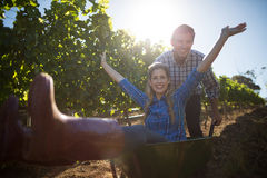 Portrait of happy man pushing his cheerful girlfriend in wheelbarrow at vineyard Stock Photography