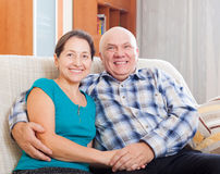 Portrait of happy mature couple together Stock Images