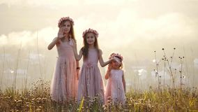 Portrait of happy tree girls in the meadow.They waving hello. Portrait of happy mother with tree her doughters sits in the meadow. Amazing sunshine autumn day stock footage