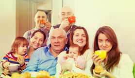 Portrait of happy multigeneration family. Having tea at home Stock Images