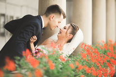 Portrait of happy newly wedding couple with bouquet Stock Image
