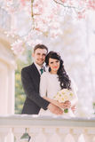 Portrait of happy newlyweds on vintage balcony under blossoming magnolia tree Royalty Free Stock Photo