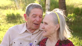 Portrait of happy old people in a sunny park. stock footage