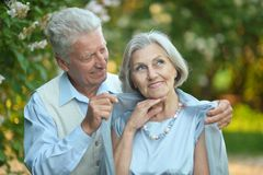 Portrait of a happy older couple Stock Images