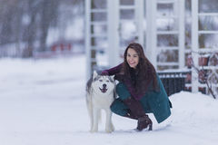 Portrait of Happy Positive Caucasian Brunette Woman Posing With Husky Dog Outdoors Stock Image