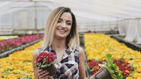 Portrait of happy pretty girl shows flowerpot at camera with smile stock video