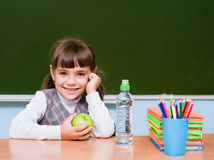 Portrait of a happy schoolgirl of elementary school near chalkboard Stock Images