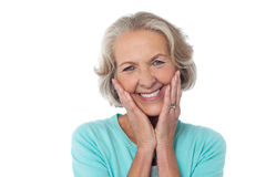 Portrait of a happy senior citizen Stock Photos