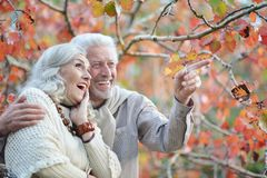 Portrait of happy senior couple in autumn park royalty free stock photography