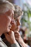 Portrait of a happy senior couple Royalty Free Stock Image