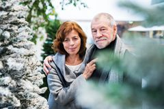 Portrait of a happy senior couple doing Christmas shopping together. Portrait of a senior couple doing Christmas shopping. Shopping center at Christmas time stock photography