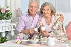 Senior couple drinking tea. Portrait of happy senior couple drinking tea Stock Images