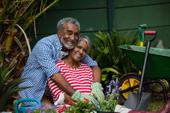 Portrait of happy senior couple embracing in backyard Royalty Free Stock Images
