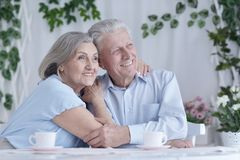 Portrait of happy senior couple at home stock photography