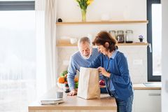 A portrait of senior couple indoors at home, unpacking shopping. A portrait of happy senior couple indoors at home, unpacking shopping royalty free stock image