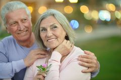 Senior couple posing Royalty Free Stock Photo