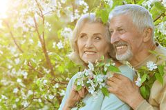 Portrait of happy senior couple resting in spring park. Happy senior couple resting in spring park royalty free stock image