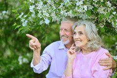 Portrait of happy senior couple resting in spring park. Happy senior couple resting in spring park stock images