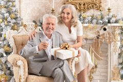Portrait of a happy senior couple sitting in armchair in room royalty free stock photo