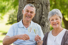 Portrait of happy senior couple toasting champagne at park Stock Images
