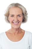 Portrait of a happy senior lady stock photo