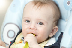 Portrait of happy smiling baby eating in highchair at kitchen Stock Photography