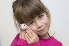 Portrait of happy smiling cute child girl with white pet mouse hamster on light copy space background. Keeping pets at home, care. And love to animals concept stock photography