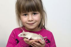 Portrait of happy smiling cute child girl with white pet mouse hamster on light copy space background. Keeping pets at home, care. And love to animals concept royalty free stock image