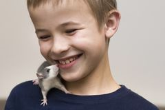 Portrait of happy smiling funny cute handsome child boy with white pet mouse hamster on shoulder on light copy space background. Keeping pets at home, care and stock photo