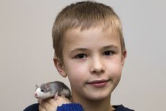 Portrait of happy smiling funny cute handsome child boy with white pet mouse hamster on shoulder on light copy space background. Keeping pets at home, care and royalty free stock images