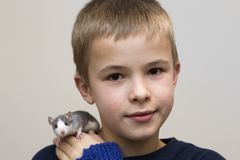Portrait of happy smiling funny cute handsome child boy with white pet mouse hamster on shoulder on light copy space background. Keeping pets at home, care and royalty free stock image