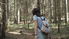 Portrait of a Happy Woman In Forest, Girl Enjoy Wood, Tourist With Backpack In National Park, Travel Lifestyle stock video