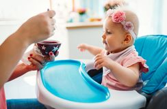 Portrait Of Happy Young Baby In High Chair being fed. By mum stock image