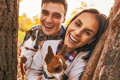 Portrait of happy young couple with dogs outdoors in autumn park stock image