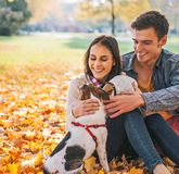 Portrait of happy couple sitting outdoors in autumn park Stock Photos
