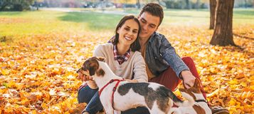 Portrait of happy young couple sitting outdoors in autumn park a Stock Image