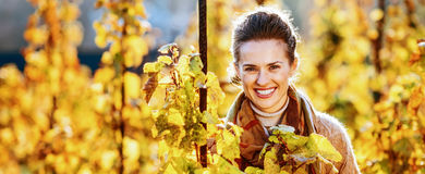 Young woman standing in autumn vineyard Royalty Free Stock Image