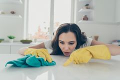 Portrait of her she nice cute lovely beautiful concentrated focused wavy-haired house-wife busy hard polishing spot stock image