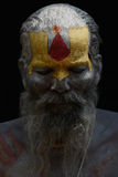Portrait of a holy man Royalty Free Stock Photos
