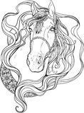 Portrait of a horse decorated with strips and feathers. Coloring Royalty Free Stock Photos