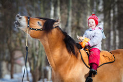 Portrait of horse, dog and child. Smiling horse, dog and child. Horse riding in winter Stock Images