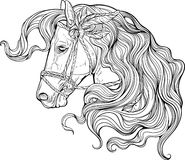 Portrait of a horse with long decorated mane. Coloring page Stock Images
