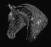 Portrait of a horse of rhinestones Stock Image